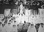 gray nuns photo